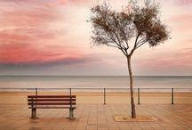 bench / by KAYU
