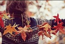 Autumn. / Autumn. My favourite season of all. Everything is getting ready for the long cold winter. The garden is ready for harvesting. Everyone begins to don their sweaters and scarves. Tea is brewed. Pie is baked. Home is where everyone begins to gather.  / by elise.