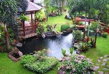 gardens! / by Erica Burnett