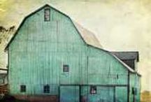 barns / by Tricia Everett