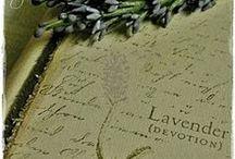 Lavender / by Tricia Everett