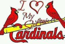 St. Louis cardinals / by Elyssa Rung