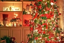 christmas decor / by Connie Feurer