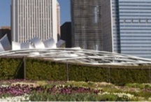 Chicago: Our kind of town / by Northwestern Medicine