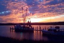 sunrise sunset / by Nealie L