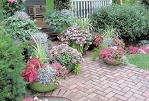 Garden/Outdoor/Porches / by Sandra Anderson