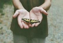 Beautiful things / by Ashton Deshotel