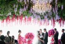 Extraordinary Florals / by Danielle Kaye Design Studio