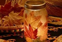 Seasonal Decorations / by Meredith Bustillo