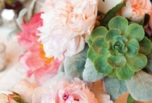 My Kids' Someday Weddings / by Kim Little
