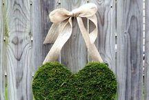 ~ Cinderella Think Green ~ / by Loni R Colin
