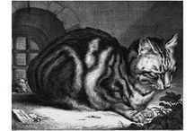 Cats in the Museum / A selection of cats in the Museum's collection / by British Museum