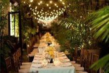 Party Ideas / For the planner and hostess in all of us! / by Liana Love