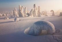 Landscapes / by Noémi Kiss-Deáki
