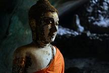 Buddha / by Shannon