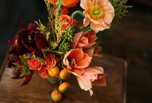 Eclectic Inspiration / Eclectic inspiration for me means pops of color, plants, vintage touches providing warmth and history and great art and books surrounding you-keeping your thoughts inspired and creative. / by Athena Roth