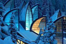 Architecture / by Nina Fu