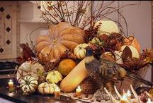 Decorating My Home for Fall / Spruce up your home for the fall by adding seasonal decorating touches in every room. / by Margie Forrest