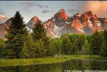 Wyoming / by Claudia