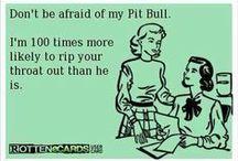 Pit Bull MeMe's / by Stubby Dog