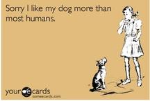 Must Love Dogs / by Danielle Nolitt