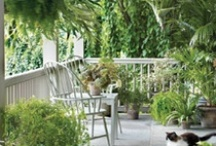 Gardens, Porches and Flowers / by Ruth Manor