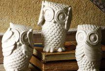 Owls / by Nicole Straszewski