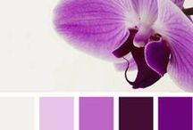 Color- Radiant Orchid, Color of the Year  / by SHOLDIT®, scarf with pocket
