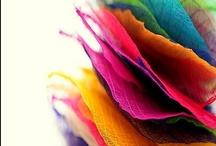 colors / by Aurora Artés