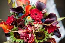 Weddings / by Katy Atkinson