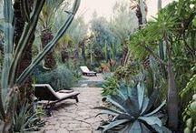 outdoor living / by Kristina Meltzer