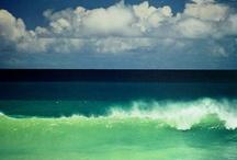 Sea / by Sarah Thomson
