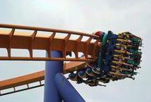 Roller Coasters / by De Vonee Kaiser