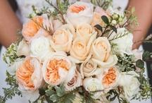 {e+m} wedding inspiration, photos & favorites. / by emily van orden