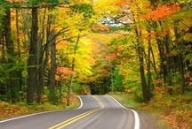 My Michigan / by Kathy Kinnaman
