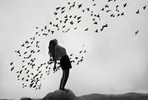 free bird / by Megan Amanda