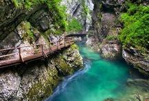 Croatia/Slovenia Trip 2012 / by Arwyn Welander