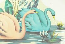 Swan Lake / by Maria Newell