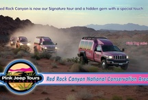 Red Rock Canyon National Conservation Area / In September we are celebrating Red Rock Canyon, National Conservation Area as our Signature tour! Red Rock Canyon has been the iconic tour for Pink Jeep® Tours for over ten years. It features an off-road adventure up Rocky Gap Road, beautiful desert surroundings and much more. This natural habitat is a hidden gem with a special touch and has proven to be our Signature tour.  / by Pink Jeep® Tours