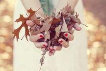 Fall~Halloween / by Kady Bowman