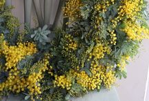 SPRING WREATH / by Barbara McKinney
