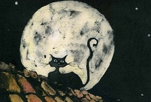 Delightfully Dark Cats / by Little Gothic Horrors