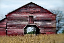 Love | Barns / I one day I want to live in one / by Sue Fox