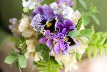 Beautiful Flowers / by Jenny Tran-Koz