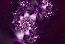 Purple crush / by Nancy Nelson