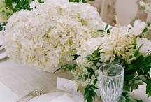 Gorgeous Garden Party Ideas! / Garden party for wedding or shower! / by Mill Crest Vintage