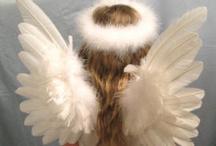 Angels, Fairies & Elves / by Ivana
