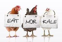 Meatless Monday: Part-time Vegetarian / #meatlessmonday #vegetarian #veggies #antiavocado / by Cristine