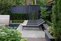 Terraces + Sunrooms + Patios / by -Renata Gross- RG Art & Design