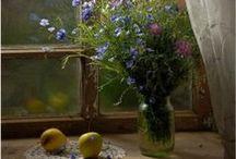 dreamy windows ♥ / by Anne Brown